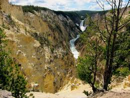 sleeping and eating in yellowstone national park travel