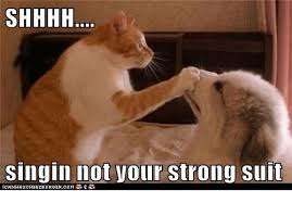 Cat Suit Meme - cat suit meme 28 images livememe com sophisticated cat cat in