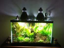 10 gallon planted tank led lighting hi everyone right now i have a 10 gallon planted tank for lighting