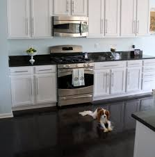 White Kitchen Cabinets Shaker Style Kitchen Neat Black And White Kitchen Design With Cherry Accent