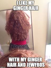 Redhead Meme - happy national love your red hair day the ginger philes