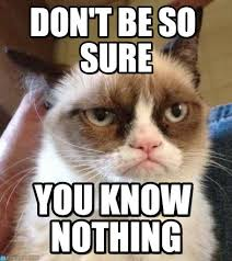 You Know Nothing Meme - don t be so sure grumpy cat reverse meme on memegen