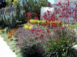 California Landscaping Ideas with English Garden California Style Traditional Landscape Los