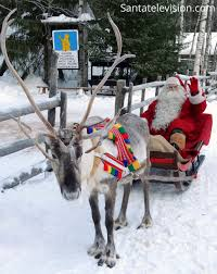 santa claus reindeer arctic circle sign finnish lapland
