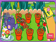 dora u0027s magical garden game play online at y8 com