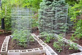 making a heirloom organic vegetable garden start to finish mid
