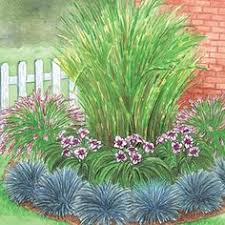 ornamental grass garden u2013 love this look u2013 would be great for the