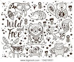 Woodland Animal Coloring Pages Vector Photo Bigstock Woodland Animals Coloring Pages