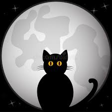 black silhouette of cat sitting in front of the moon stock