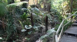 Wagga Wagga Botanical Gardens Botanic Gardens Wagga City Council