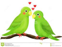 love bird stock images image 3315414