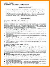 summary exle for resume exle resume summary statements tomyumtumweb
