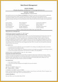 Bank Teller Resume Examples No Experience Objective On Resume For Bank Teller Resume Peppapp
