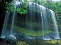 Florida waterfalls images Welcome to florida waterfalls jpg