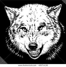 patterned head wolf vector illustration line stock vector
