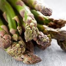 vegetable plants buy vegetable transplants u2013 harris seeds