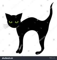 halloween cat eyes background black cat isolated halloween vector illustration stock vector