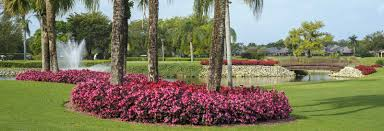 Homes For Rent In Florida by The Villages Florida Homes For Rent