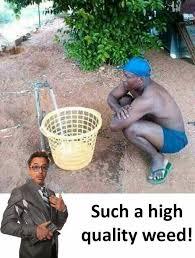 High Quality Memes - dopl3r com memes such a high quality weed