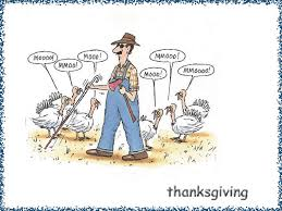 Thanksgiving Memes Tumblr - funny thanksgiving wallpaper wallpaper hd funny wallpaper 7