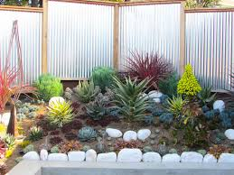 succulents and low water gardens archives magic gardens landscaping
