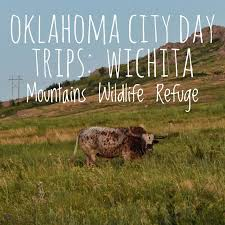 Oklahoma wildlife tours images Best 25 oklahoma mountains ideas oklahoma jpg
