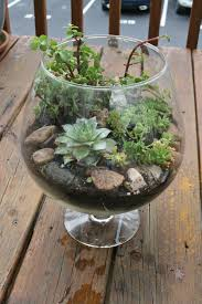 pinspiration monday diy fish bowl terrarium dream green diy