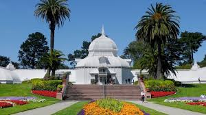 Botanical Garden Golden Gate Park 20 Things To Do With In Golden Gate Park Nearest