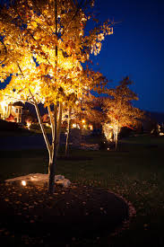 Led Landscape Lighting Low Voltage by Evening Shadows Lighting