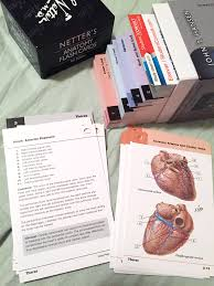 netter anatomy flashcards image collections human anatomy learning