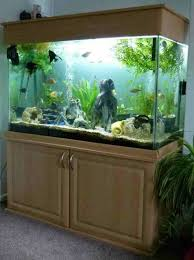 How To Make Fish Tank Decorations At Home Best 25 Aquarium Cabinet Ideas On Pinterest Tank Stand Diy