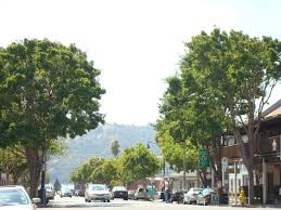 the downtown benicia alliance is a partnership of our businesses