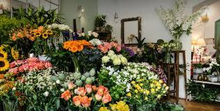 flower shop where to go in prague metamorphosis flower shop tres bohemes
