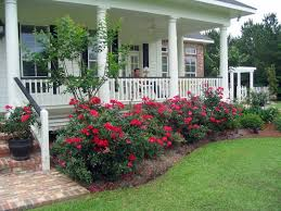 farmhouse landscaping front yard 99 gorgeous photos 40 dream