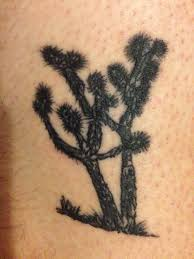 joshua tree to my in california done by liquid