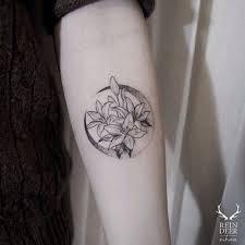 moon flower best ideas gallery