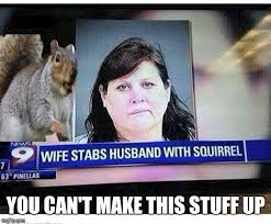 Crazy Lady Meme - squirrel is weapon of choice imgflip
