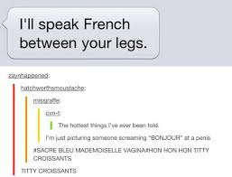 Meme Meaning French - and when it happened again speak french hilarious and school