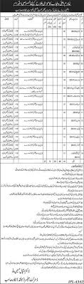 test pattern of hr 1384 jobs in health department district nankana sahib 2016 dae education