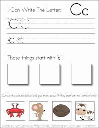 worksheet cut and paste worksheets luizah worksheet and essay