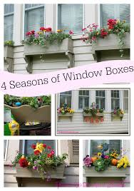 Christmas Window Box Decorating Ideas by Window Boxes For All Seasons Roots North U0026 South
