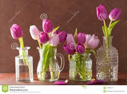 Beautiful Vases Beautiful Purple Tulip Flowers Bouquet In Vases Stock Photo