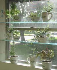 window herb harden diy spice up your kitchen with a window herb garden