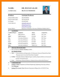 sle resume format word sle resume format in word file 28 images school resume format