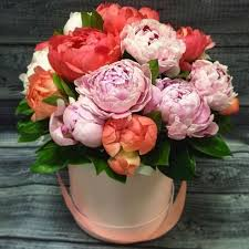 Peonies Delivery Peonies In A Hatbox