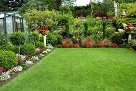 Garden Shrubs Ideas Small Backyard Ideas Landscaping Photos Design Plans