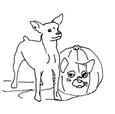 chihuahua dog dress colouring page colouring tube