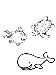 imagenes animales acuaticos para colorear animales oceanicos para colorear para dibujos de animales acuaticos