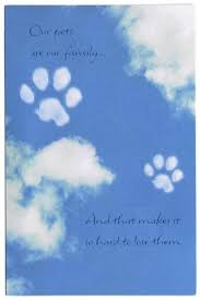 the loss of a pet grieving a pet helpful resources