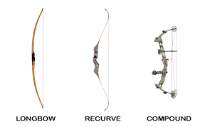 bows for physics of archery the science explained